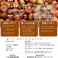 栗まつりちらちらし (0830)-001
